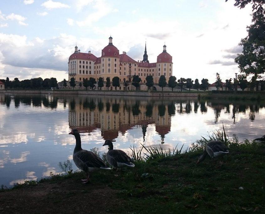 nos no mundo site viagem castelo moritzburg dresden